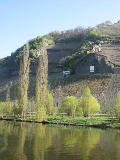 berges sur la Moselle