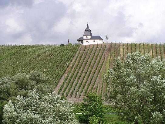Chapelle dans les vignes