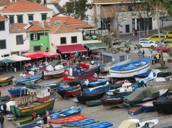 Port de pêcheurs- Camara de Lobos