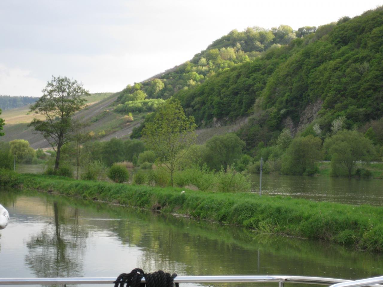 MOSELLE TOUJOURS HAUTE