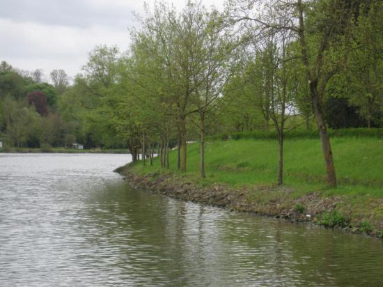 Rives de la Moselle Luxembourgeoise