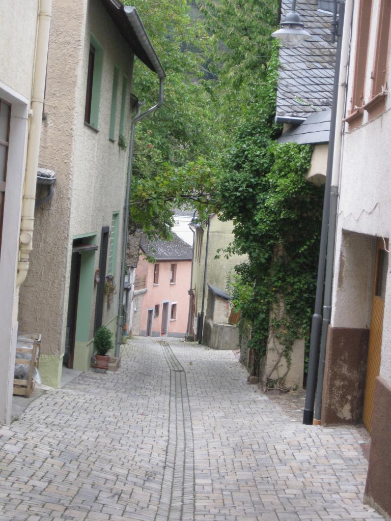 une rue de Neumagen-Dhron